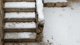 Snow and stairs are painful enemies!
