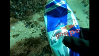 Freediver Picks Up Trash From Seabed off Victoria Coast