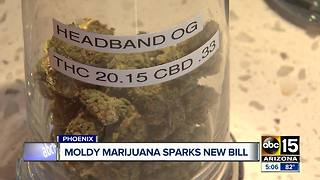Moldy marijuana sparks new bill in Arizona legislature - Video