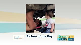 Friday's Picture of the Day 7/21/17 - Video