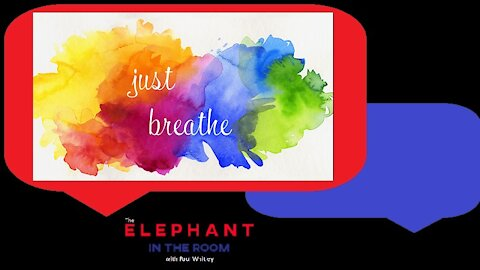 Take a Moment to Breathe | The Elephant in the Room | Nov 4, 2020