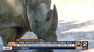 Free shuttle to Maryland Zoo starts July 1 - Video