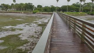 Hurricane Irma drains Florida beach - Video
