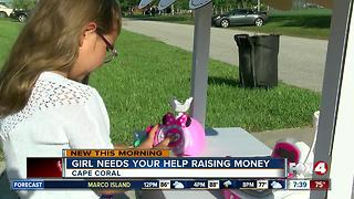 6-year-old Southwest Florida girl sells lemonade to help terminally sick cousin - Video