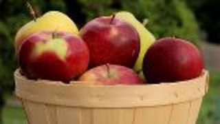 Kid-Friendly Apple Dip Recipes - Video