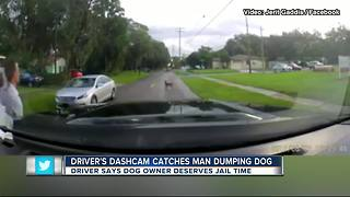 Dash-cam captures dog being abandoned