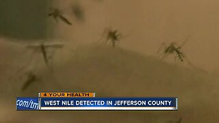 West Nile Virus detected in Jefferson County