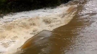 Southeast Queensland Ravaged by Flooding - Video