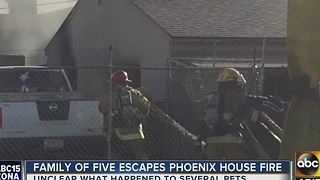 Dogs escape house fire in north Phoenix - Video