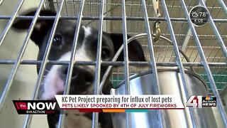 KC Pet Project expects influx of pets after 4th of July - Video