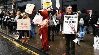 Anti-fur activists protest at London Fashion Week - Video
