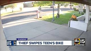 Bike thief caught on camera in Phoenix