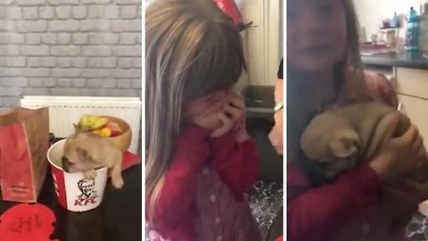Heart warming video shows amazing puppy surprise for young girl