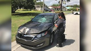 Woman hits boyfriend with car following argument in Port St. Lucie, police say - Video