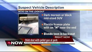 Child shot with pellet gun in Fishhawk area park - Video