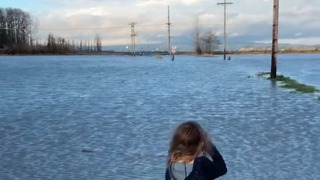 Flooding in Snohomish County Swamps Farmland - Video