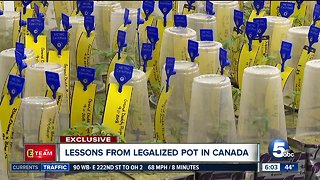 Lessons learned from legalizing pot in Canada