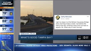 What's Good Tampa Bay? | Where is your favorite walking spot?