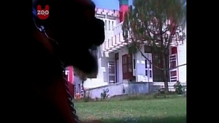 5-Star Indian Dog Hotel - Video