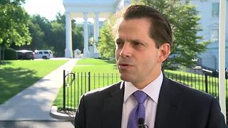 New White House Comms. Director Anthony Scaramucci on Trump: 'People in Wisconsin love the tweeting' - Video