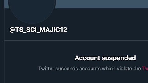 [MEQ #66: 13 August 2020] Twitter SUSPENDS Majestic 12's account @TS_SCI_MAJIC12 😡