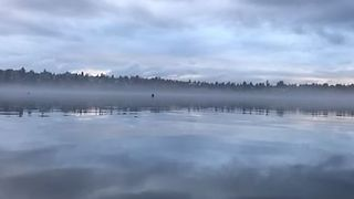 Fog Washes Over Seattle Area Lakes - Video