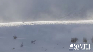 Rare Phenomenon Knows As A Ghost Snow Tsunami Finally Caught On Camera - Video