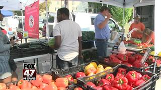 Divided views on farmers market ruling - Video