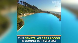 Nation's first crystal-clear lagoon opens Spring 2018 in Tampa Bay | Taste and See Tampa Bay - Video