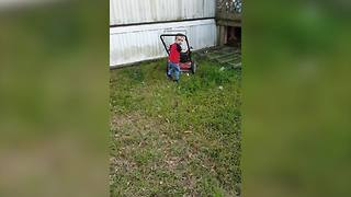 Toddler Boy Excited To Help With Gardening Chores - Video