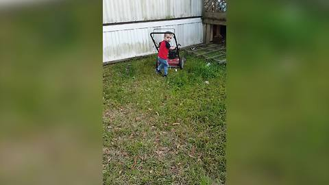 Toddler Boy Excited To Help With Gardening Chores