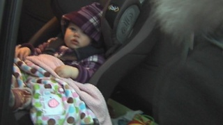 Toxic chemicals in car seats - Video