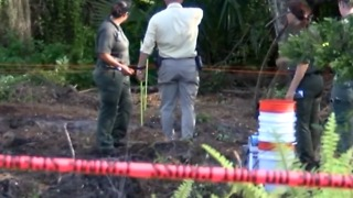 Human remains found in St. Lucie County - Video