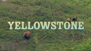 Destination Yellowstone Background Video - 2