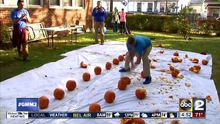 Guinness record holder attempts Halloween themed records - Video