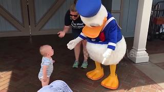 Donald Duck Helps Cute Baby To Take His First Steps - Video