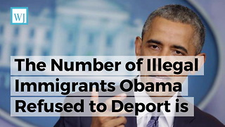 The Number of Illegal Immigrants Obama Refused to Deport is More Than the Entire Population of Atlanta - Video