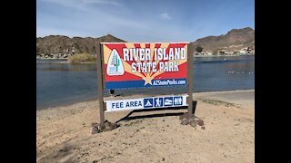 River Island State Park in Arizona - On the Colorado River