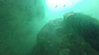 Fearless diver swims underneath cave in one breath - Video