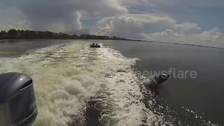 Dolphins jump in boat's wake while kids ride inflatable tube - Video