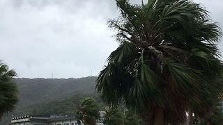 Strong Winds From Typhoon Noru Whip Southwestern Japan Islands - Video