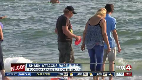 Experts say bull sharks call Southwest Florida home