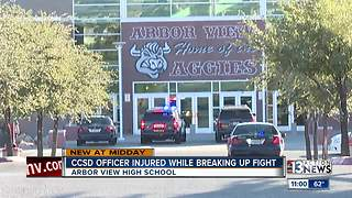 CCSD police officer injured during fight - Video