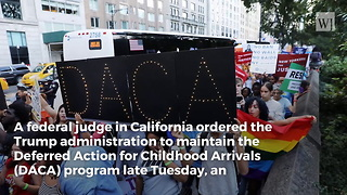Judge Issues Order Forcing Trump Administration to Keep DACA - Video