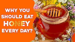 Why Eating Honey Everyday Will Benefit You?