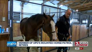 Mounted patrol horse retires - Video
