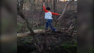 Little Boy Falls Out Of A Tree And Into The Water - Video
