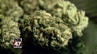 Medical marijuana licensing rate doubles as the state prepares for recreational applications