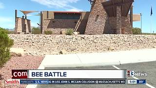 Bees force closure of rest stop near Searchlight - Video