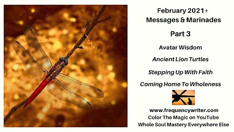 February 2021+ Marinades (Part 3): Avatar Wisdom, Ancient Lion Turtles, & Stepping Up With Faith
